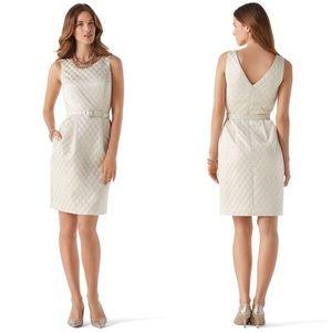NWT 12 White House Black Market jacquard dress
